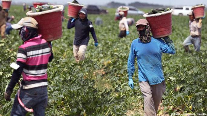 agricultura-trabajadores-estados-unidos