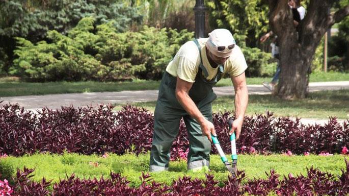 jardineros-paisajistas-jardin-trabajo